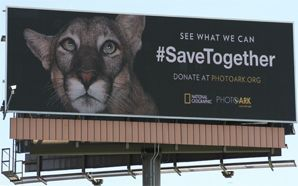 Natgeo, OAAA build mass awareness on protection of endangered species