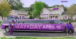Wayfair rides high on a Limo to woo shoppers