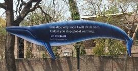 JadeBlue innovatively drives home environmental message