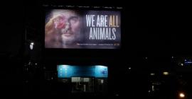 Live Vegan & Wear Vegan, says PETA India