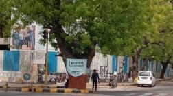 JadeBlue innovates yet again on Environment Day