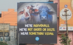 PETA India rolls out OOH campaign to promote veganism