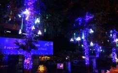 'Uninor lights up Lucknow's Ashok Marg for Diwali'