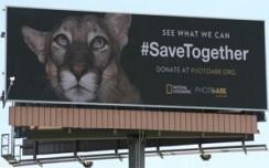 Natgeo, OAAA build mass awareness on protection of endangered species
