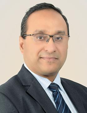 Bharat Rajamani, CEO<br> US Advertising